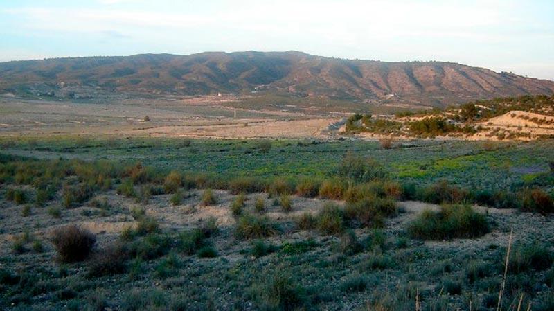 ayuntamiento-condenado-pagar-600-000-euros-proyecto-de-cieza-golf