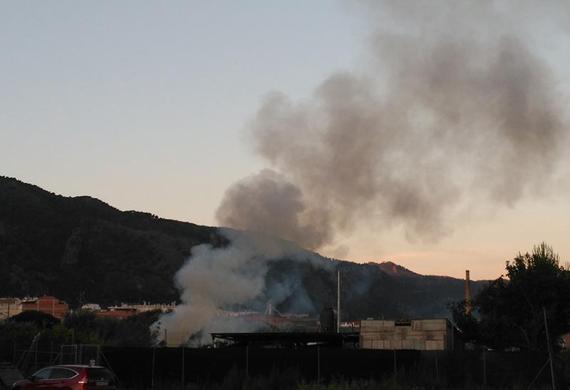 ecologistas-accion-denuncia-contaminacion-quemas-agricolas-costera-sur