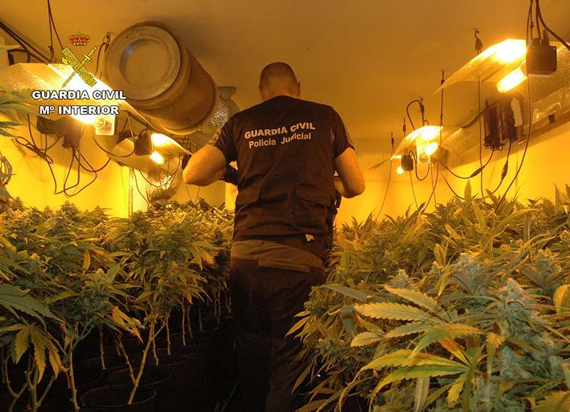 guardia-civil-desmantela-invernadero-marihuana