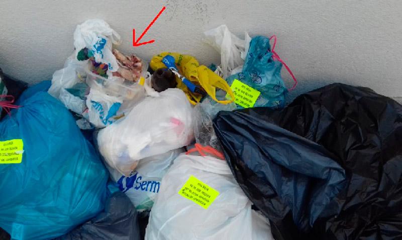 vox-cieza-exige-recogida-basura