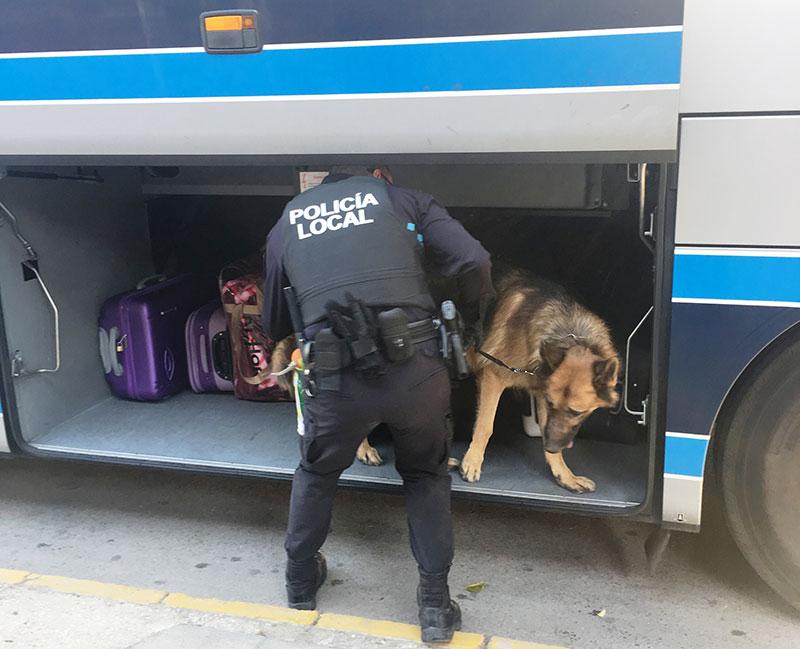 policia-local-cieza-intensifica-lucha-contra-consumo-trafico-drogras