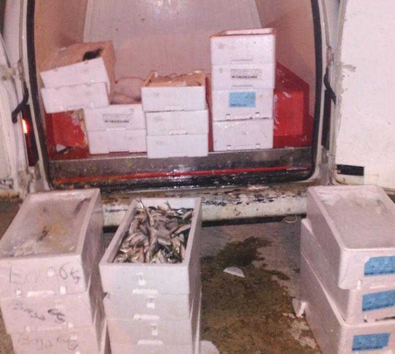 sorprendido-vendiendo-pescado-ilegalmente-policia-local-cieza