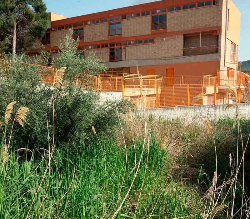 ccciezanos-exige-limpieza-solar-colegio-balmes