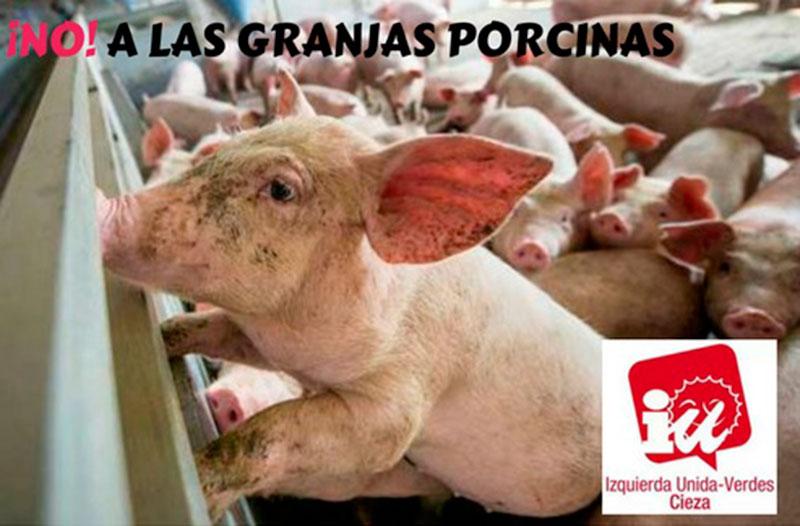 iu-verdes-advierte-consecuencias-burbuja-granjas-porcinas