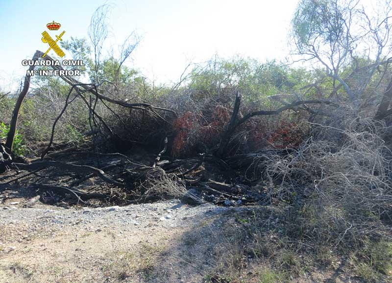 detenido-un-octogenario-como-presunto-autor-de-cuatro-incendios-forestales