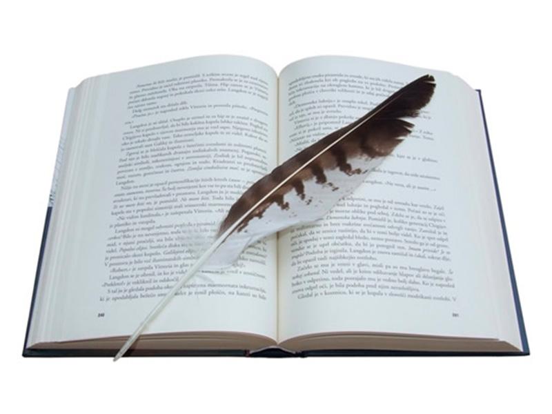 vox-propone-crear-el-premio-nacional-de-novela-ciudad-de-cieza