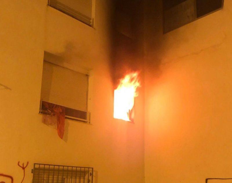 un-incendio-en-una-vivienda-provoca-la-muerte-de-dos-mascotas