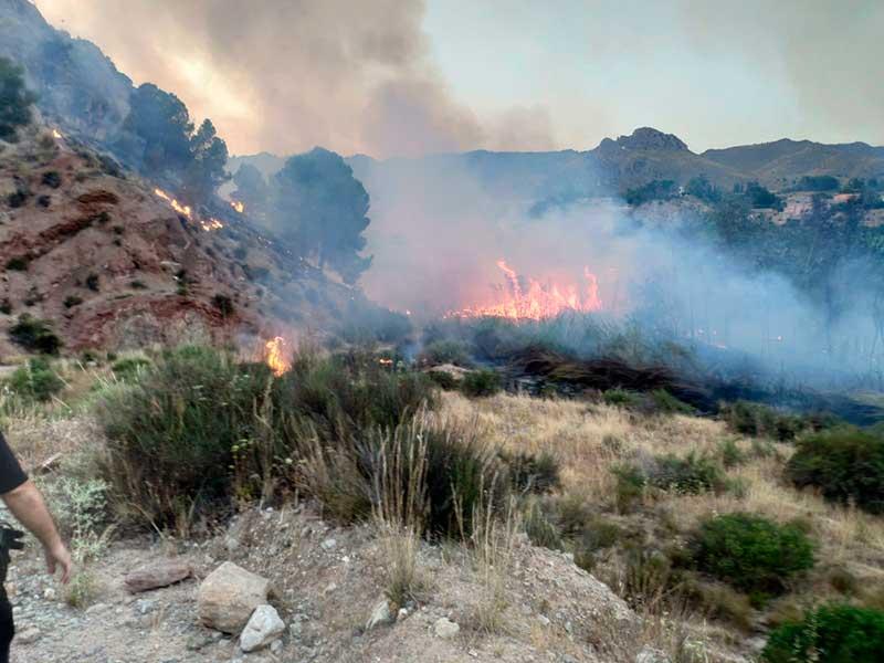 por-que-se-estan-sucediendo-los-incendios-provocados-en-cieza