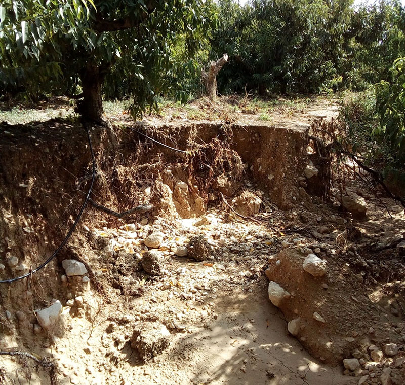 podemos-cieza-se-solidariza-con-los-afectados-por-las-lluvias-y-agradece-la-intervencion-de-instituciones-y-de-voluntarios