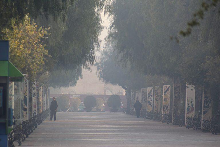 el-ayuntamiento-pone-en-marcha-la-campana-protegete-del-humo