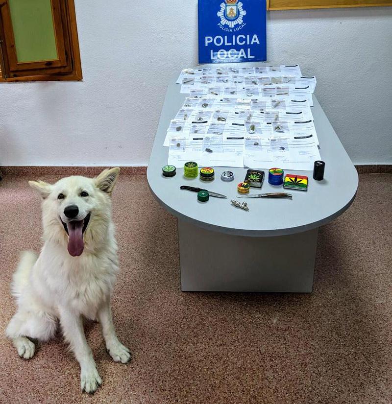 la-unidad-canina-de-cieza-prosigue-su-lucha-contra-la-droga